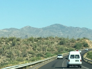 The view heading north out of Phoenix. Plenty of cactus and mountains.