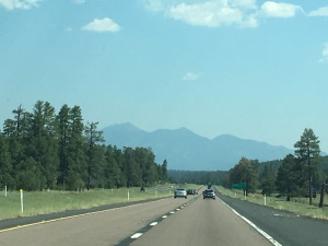 The view further north, in the Sedona and Flagstaff area where the landscape is much greener.